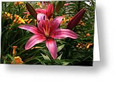 Pink Lily Lush Garden Greeting Card