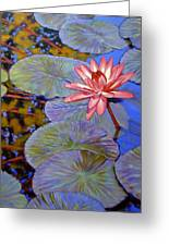 Pink Lily With Silver Pads Greeting Card
