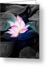 Pink Lotus Greeting Card