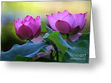 Pink Lotus Greeting Card