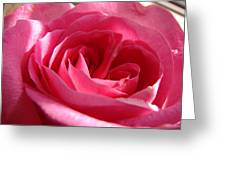 Pink Greeting Card