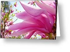 Pink Magnolia Flower Art Print Botanical Tree Baslee Troutman Greeting Card