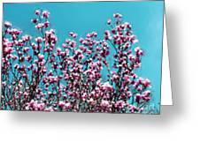Pink Magnolia Splendor Greeting Card