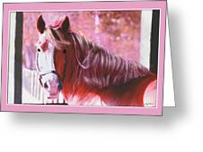 Pink Mare Greeting Card