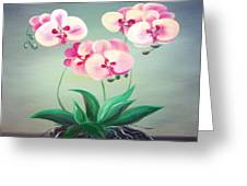 Pink Orchids 2 Greeting Card