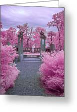 Pink Path To Paradise Greeting Card
