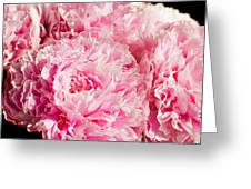 Pink Peony Bouquet Greeting Card