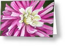 Pink Petal Blast Greeting Card