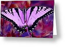 Pink Purple Butterfly Greeting Card