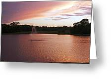 Pink Reflections Greeting Card