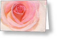 Pink Romance Greeting Card
