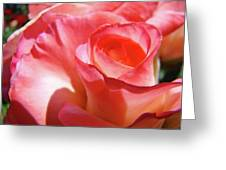 Pink Rose Art Prints Floral Summer Rose Flower Baslee Troutman Greeting Card