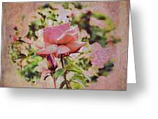 Pink Rose Doily Greeting Card