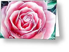 Pink Rose Flower Greeting Card