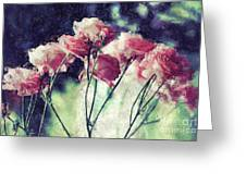 Pink Rose Flowers Greeting Card