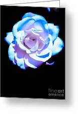 Pink Rose Has The Blues Greeting Card