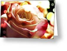 Pink Rose In Sparkling Lights Greeting Card