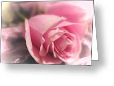 Pink Rose Macro Abstract 1 Greeting Card