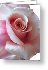 Pink Rose Painting Greeting Card