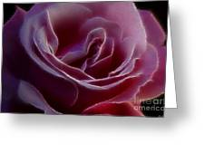 Pink Rose Portrait Greeting Card