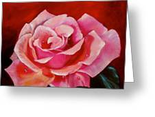 Pink Rose With Dew Drops Jenny Lee Discount Greeting Card