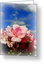Pink Roses Against The Beautiful Arizona Sky Greeting Card