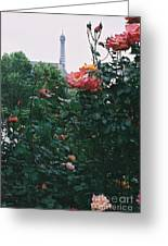 Pink Roses And The Eiffel Tower Greeting Card