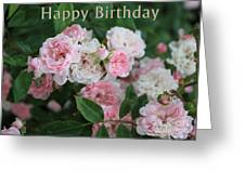 Pink Roses Birthday Card Greeting Card
