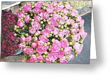 Pink Roses Photograph Greeting Card