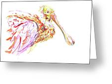 Pink Spoonbill Greeting Card