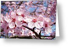 Pink Spring Blossoms Art Print Blue Sky Landscape Baslee Troutman Greeting Card