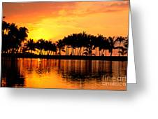 Pink Sunset And Palms Greeting Card