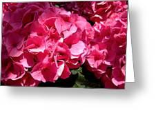 Pink-tacular Greeting Card