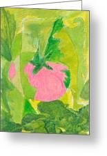 Pink Tomato Greeting Card