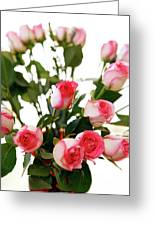 Pink Trimmed Roses Greeting Card