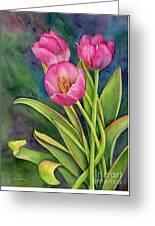 Pink Tulip Twist Greeting Card