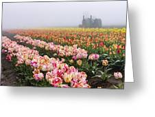 Pink Tulips And Tractor Greeting Card