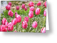 Pink Tulips By Peaceful Pond Greeting Card