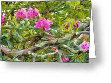 Pink With Lichen Greeting Card