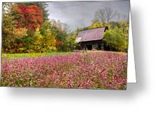 Pinks In The Pasture Greeting Card