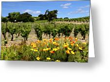 Pinot Noir And Poppies Greeting Card