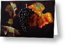 Pinot Noir Grape With Autumn Leaves Greeting Card