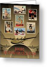 Pinups - The Aviation Collection Greeting Card