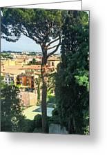 Pinus Pinea Greeting Card