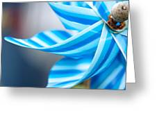 Pinwheel Greeting Card