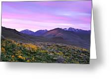 Pioneer Mountain Sunset Greeting Card