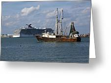 Pirate's Pride In Port Canaveral Greeting Card