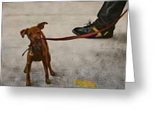 Pisa Puppy Greeting Card