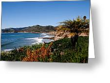 Pismo Beach California Greeting Card