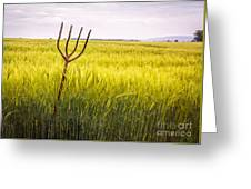 Pitch Fork In Wheat Field Greeting Card